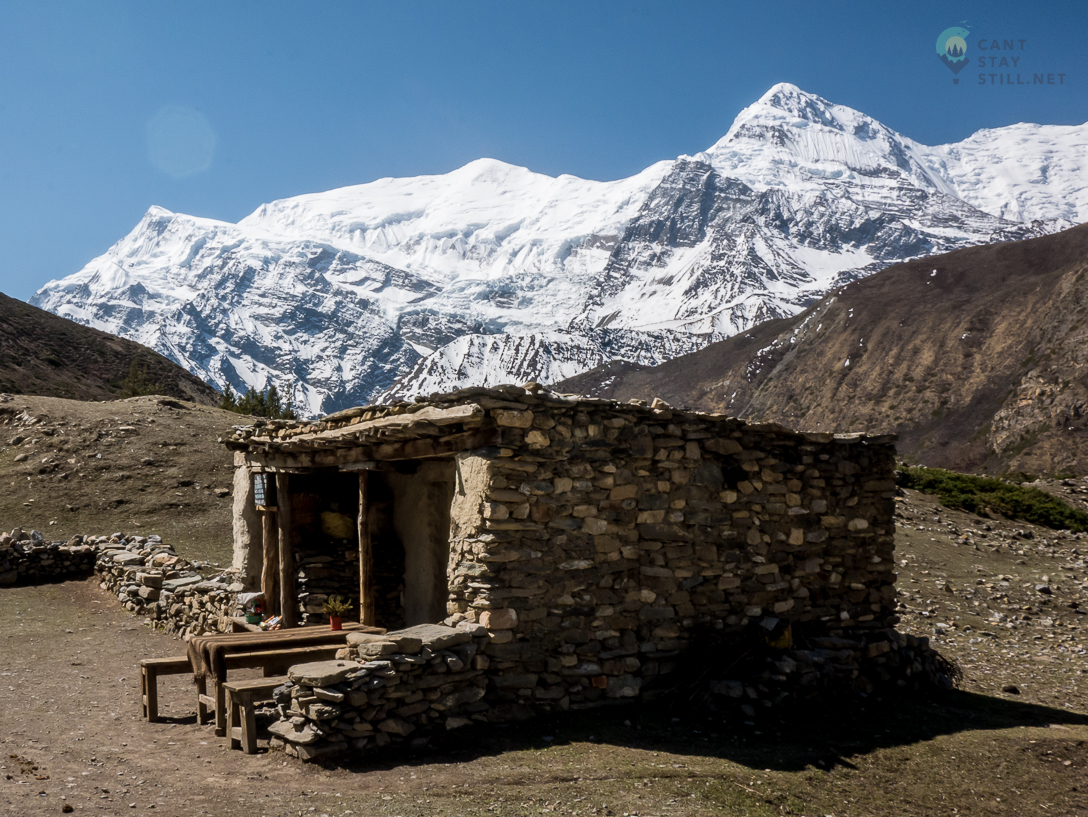 simple tea house with Annapurna range in the background