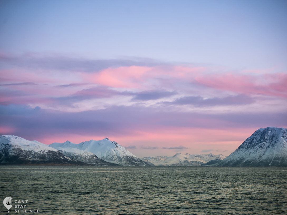 pink sunrise in the fjords in winter in Norway