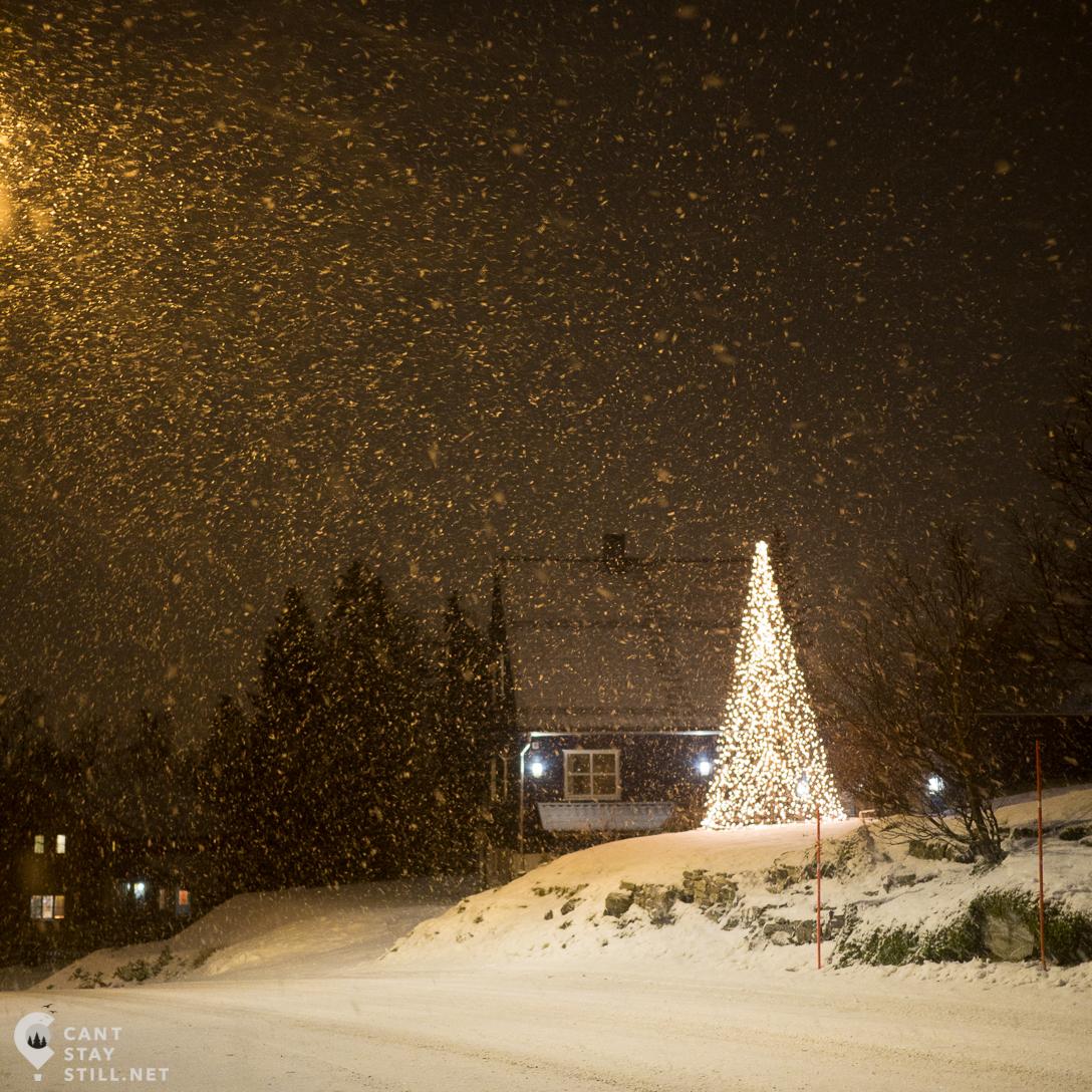 winter wonderland in Tromso, Norway