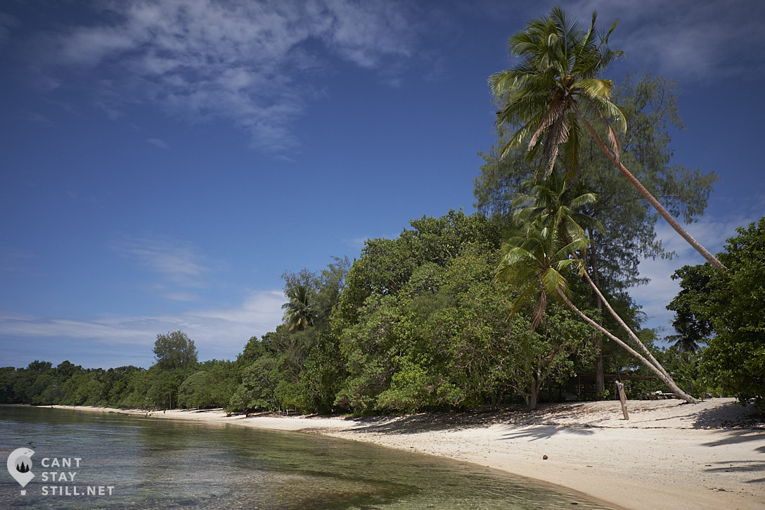beach and coconut palm trees in New Ireland, Papua New Guinea